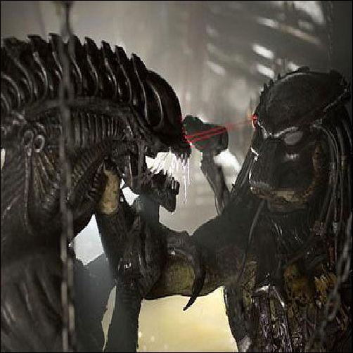AVP2-alien-and-predator-8714693-502-502