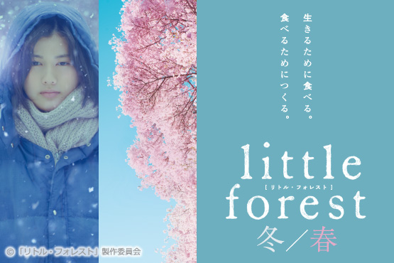 main_littleforest-ws